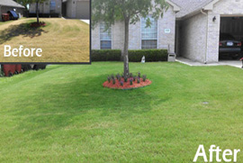 lawn maintenance service richardson tx