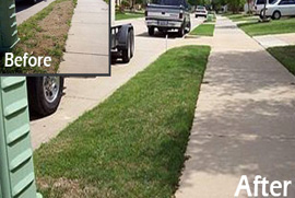 lawn care service dallas tx