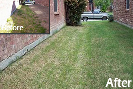 lawn care maintenance lavon tx