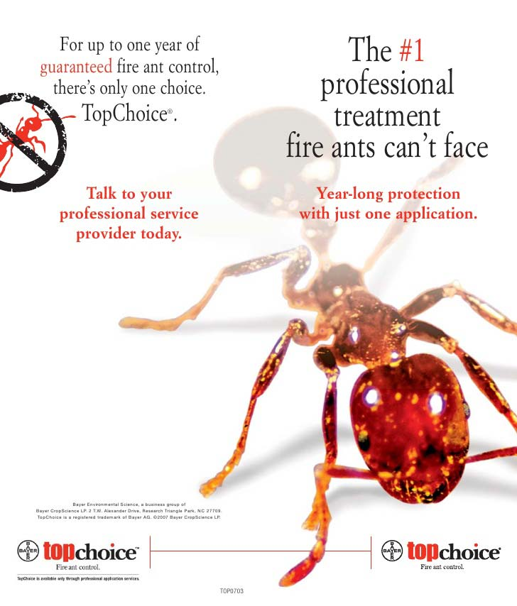 year round fire ant pest control dallas texas