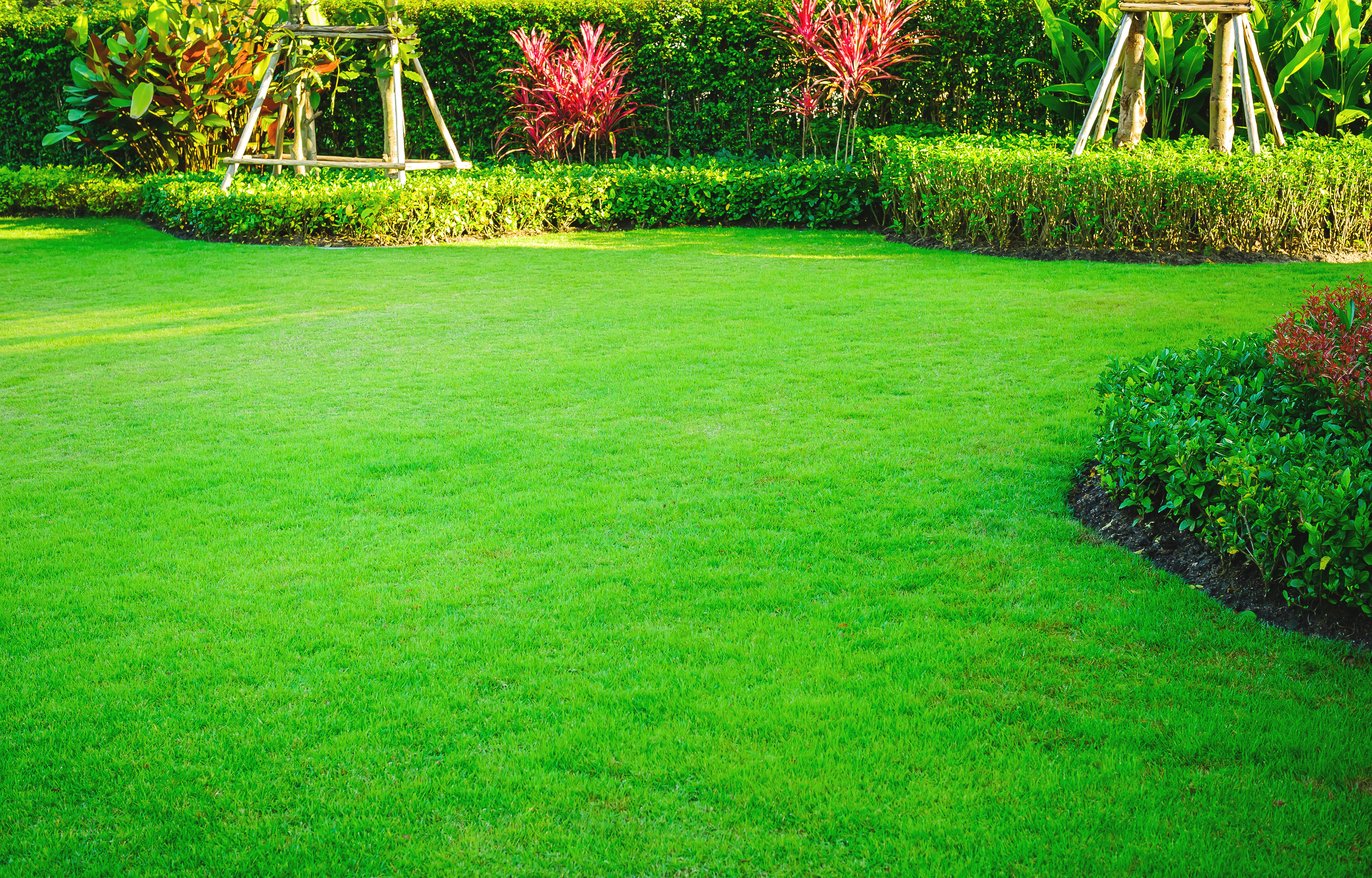 Tips For Grass Treatment
