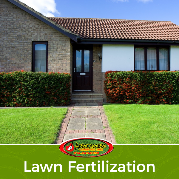 Signs that Indicate you Have Over-Fertilized your Lawn