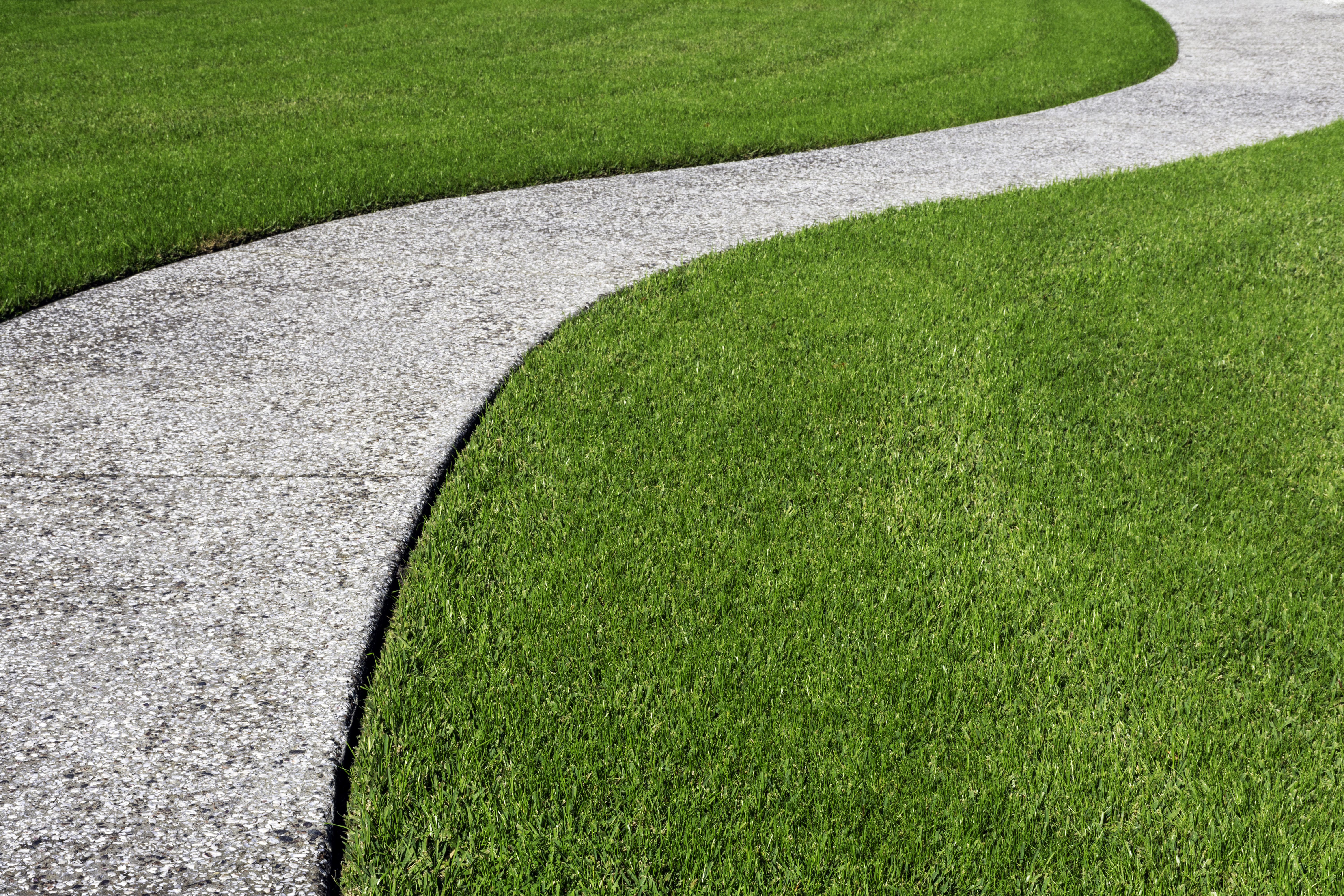 Taking Care of Your Zoysia Lawn