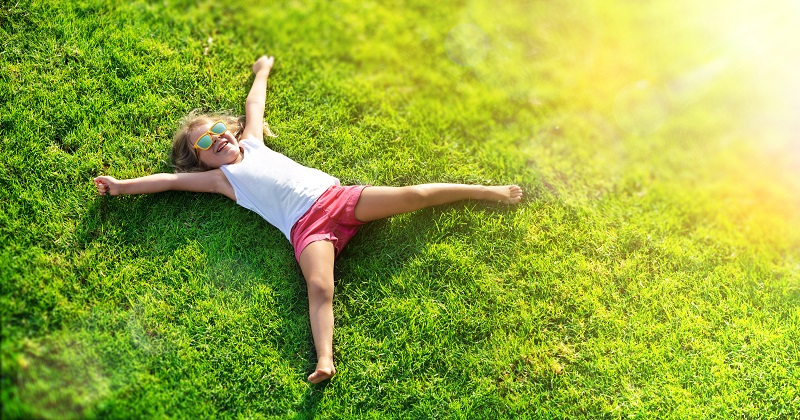 What Lawn Problems Should you Expect During Summer?